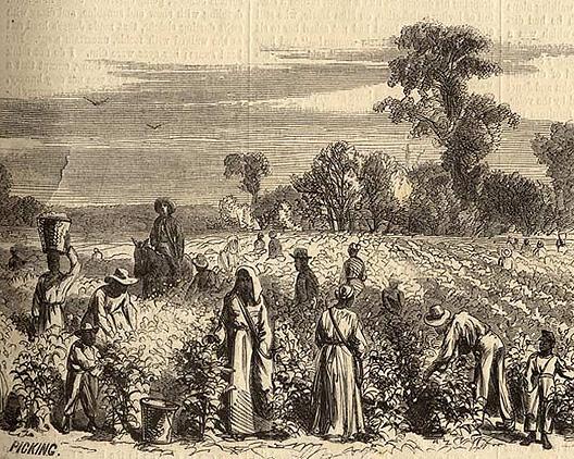 27b. Slave Life and Slave Codes