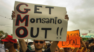 Monsanto-Protest-625x347