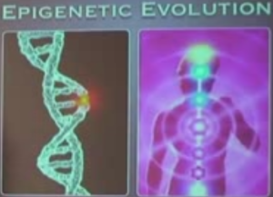 Epigenetic Evolution