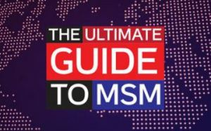 ultimate_guide_to_msm_rt_logo_1