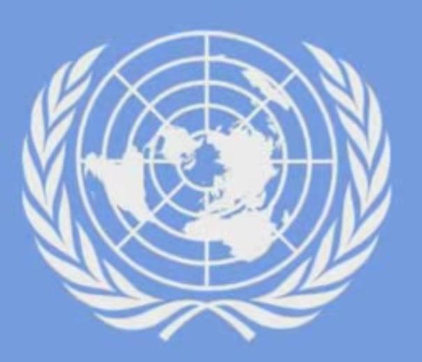 u.n. flag