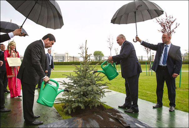 Yes, these two gentlemen are actually watering a tree in the middle of a downpour…