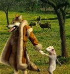3 wolf in sheeps clothing