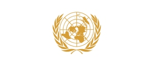 this is the official UNITED NATIONS' logo, it is gold.