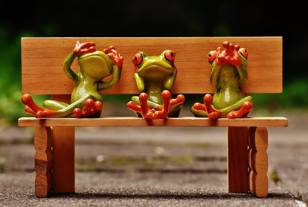 frogs not see not hear do not speak_Alexas