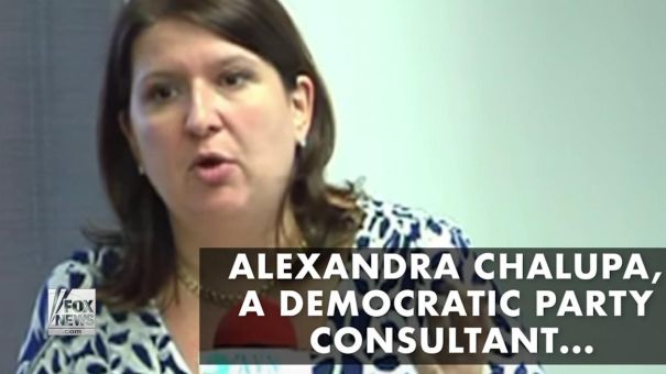 DNC consultant, Hillary Clinton associate member of the Never Trump resistance conspiracy.